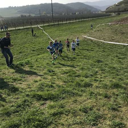 Cross Rouffach 2019